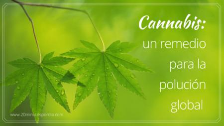 El Cannabis más allá de la marihuana