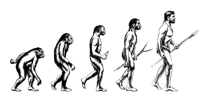 El rol del fuego en la evoluciôn humana