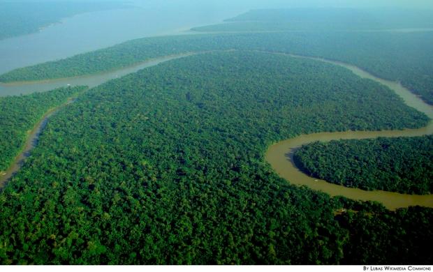 El bosque Amazonas es tan grande que gran parte de su superficie permanece inexplorada